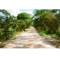 Foto de terreno habitacional en venta en  , san pablo, las choapas, veracruz de ignacio de la llave, 2940777 No. 01