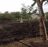 Foto de terreno habitacional en venta en  , san pedro apatlaco, ayala, morelos, 4224020 No. 01