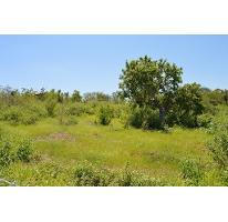 Foto de terreno habitacional en venta en  , san pedro, la paz, baja california sur, 2366576 No. 01