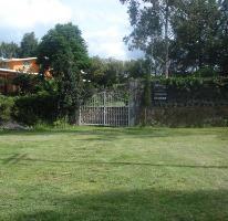 Foto de terreno habitacional en venta en  , san pedro pareo, pátzcuaro, michoacán de ocampo, 2631360 No. 01