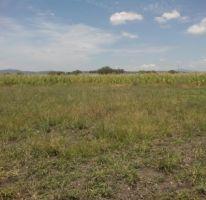 Foto de terreno habitacional en venta en, san pedro zacatenco, el marqués, querétaro, 1357077 no 01