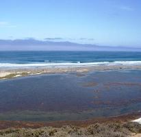 Foto de terreno habitacional en venta en  , san quintín, ensenada, baja california, 2487952 No. 01
