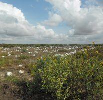 Foto de terreno comercial en venta en, san rafael de costa rica, culiacán, sinaloa, 2348718 no 01