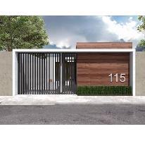 Foto de casa en venta en  , san rafael, rioverde, san luis potosí, 1685209 No. 01