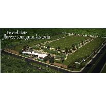 Foto de terreno habitacional en venta en  , san ramon norte, mérida, yucatán, 1084525 No. 01