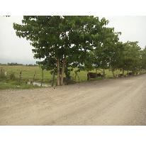 Foto de terreno habitacional en venta en  , san vicente, bahía de banderas, nayarit, 2686520 No. 01