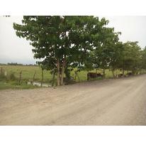 Foto de terreno habitacional en venta en  , san vicente, bahía de banderas, nayarit, 2761339 No. 01
