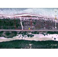 Foto de terreno habitacional en venta en  , santa clara, dzidzantún, yucatán, 2292170 No. 01
