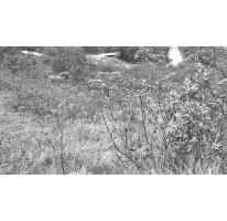 Foto de terreno habitacional en venta en, santa cruz del astillero, el arenal, jalisco, 2006576 no 01
