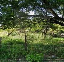 Foto de terreno habitacional en venta en  , santa efigenia, cadereyta jiménez, nuevo león, 1370629 No. 01