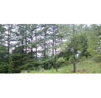 Foto de terreno comercial en venta en  , santa fe mezapa, xalatlaco, méxico, 2597909 No. 01
