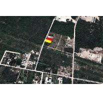 Foto de terreno habitacional en venta en santa gertrudis copo 0, santa gertrudis copo, mérida, yucatán, 2131767 No. 01