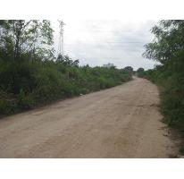 Foto de terreno habitacional en venta en santa gertrudis copo 0, santa gertrudis copo, mérida, yucatán, 2131767 No. 02