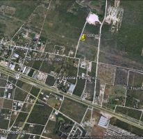 Foto de terreno habitacional en venta en, santa gertrudis copo, mérida, yucatán, 1600602 no 01