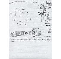 Foto de terreno habitacional en venta en  , santa gertrudis copo, mérida, yucatán, 1899046 No. 01