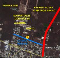 Foto de terreno habitacional en venta en  , santa gertrudis copo, mérida, yucatán, 2290469 No. 01