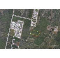 Foto de terreno habitacional en venta en  , santa gertrudis copo, mérida, yucatán, 2314116 No. 01