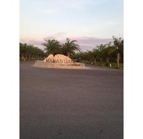 Foto de terreno habitacional en venta en  , santa gertrudis copo, mérida, yucatán, 2336340 No. 01