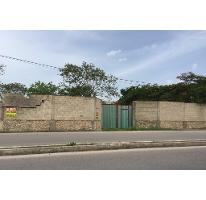 Foto de terreno comercial en renta en  , santa gertrudis copo, mérida, yucatán, 2616635 No. 01