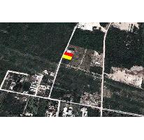 Foto de terreno habitacional en venta en  , santa gertrudis copo, mérida, yucatán, 2637779 No. 02