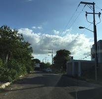 Foto de terreno habitacional en venta en  , santa gertrudis copo, mérida, yucatán, 2735750 No. 01