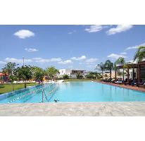 Foto de terreno habitacional en venta en  , santa gertrudis copo, mérida, yucatán, 2755545 No. 01
