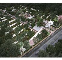 Foto de terreno habitacional en venta en  , santa gertrudis copo, mérida, yucatán, 2755582 No. 01