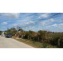 Foto de terreno comercial en venta en  , santa gertrudis copo, mérida, yucatán, 2810803 No. 01