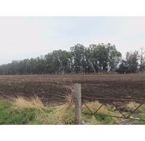 Foto de terreno comercial en venta en  , santa matilde, san juan del río, querétaro, 1777976 No. 01