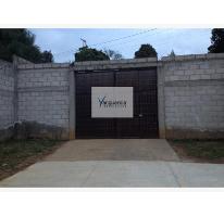 Foto de terreno comercial en venta en santiago oxtotitlan 0, villa guerrero, villa guerrero, méxico, 2656563 No. 01