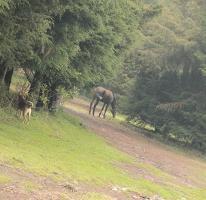 Foto de rancho en venta en  , santo tomas ajusco, tlalpan, distrito federal, 3926161 No. 01