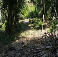 Foto de terreno habitacional en venta en  , sayulita, bahía de banderas, nayarit, 2874740 No. 01