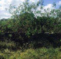 Foto de terreno habitacional en venta en sierra papacal 0, sierra papacal, mérida, yucatán, 0 No. 01