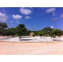 Foto de terreno habitacional en venta en  , sierra papacal, mérida, yucatán, 1496173 No. 01
