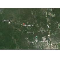 Foto de terreno habitacional en venta en  , sierra papacal, mérida, yucatán, 2515790 No. 01