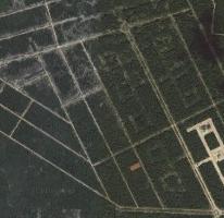 Foto de terreno habitacional en venta en  , sierra papacal, mérida, yucatán, 2756864 No. 01