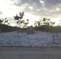 Foto de terreno habitacional en venta en  , sierra papacal, mérida, yucatán, 3221009 No. 01