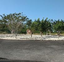 Foto de terreno habitacional en venta en  , sierra papacal, mérida, yucatán, 3304199 No. 01