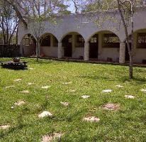 Foto de rancho en venta en  , sudzal, sudzal, yucatán, 3922638 No. 01