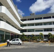 Foto de oficina en renta en  , supermanzana 57, benito juárez, quintana roo, 2640068 No. 01