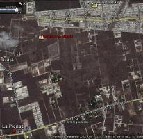 Foto de terreno habitacional en venta en tablaje , dzitya, mérida, yucatán, 0 No. 01