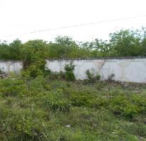 Foto de terreno habitacional en venta en, tamanché, mérida, yucatán, 1860436 no 01