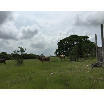 Foto de rancho en venta en  , tamiahua, tamiahua, veracruz de ignacio de la llave, 1861278 No. 01