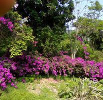 Foto de casa en venta en  , tamoanchan, jiutepec, morelos, 3620989 No. 01