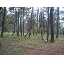 Foto de terreno habitacional en venta en  , tapalpa, tapalpa, jalisco, 1079939 No. 01