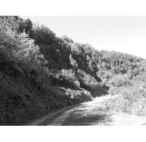 Foto de terreno comercial en venta en  , tatatila, tatatila, veracruz de ignacio de la llave, 2637810 No. 02
