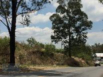 Foto de terreno habitacional en venta en  , san pedro tecomatepec, ixtapan de la sal, méxico, 1739302 No. 01