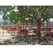 Foto de terreno comercial en venta en  , tehuixtla, jojutla, morelos, 2713402 No. 01
