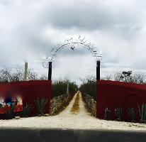 Foto de rancho en venta en telchac 0, telchac, telchac pueblo, yucatán, 3224349 No. 01