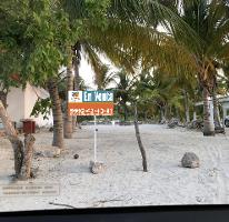 Foto de terreno habitacional en venta en  , telchac puerto, telchac puerto, yucatán, 3706179 No. 01